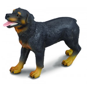 CATS&DOGS-ROTTWEILER-L