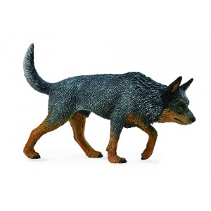 CATS&DOGS-AUSTRALIAN CATTLE DOG-L