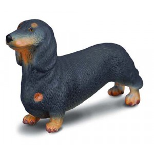CATS&DOGS-DACHSHUND-S