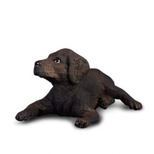 CATS&DOGS-LABRADOR RETRIEVER PUPPY-S