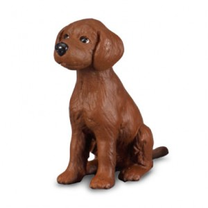 CATS&DOGS-IRISH RED SETTER PUPPY-S