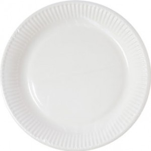 WHITE COMPOSTABLE PAPER PLATES 23CM 10CT
