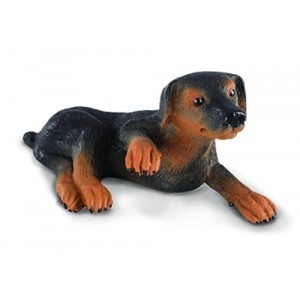 CATS&DOGS-DOBERMAN PINSCHER PUPPY-S