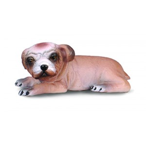CATS&DOGS-BULLDOG PUPPY-S