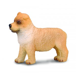 CATS&DOGS-CHOW CHOW PUPPY-S.