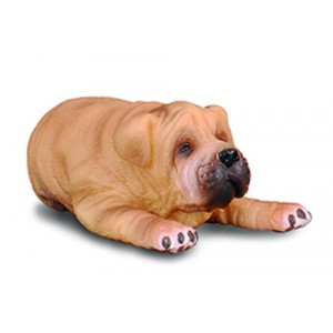 CATS&DOGS-SHAR PEI PUPPY-S