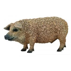 FARMLIFE-HUNGARIAN PIG-M