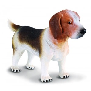 CATS&DOGS-BEAGLE-M